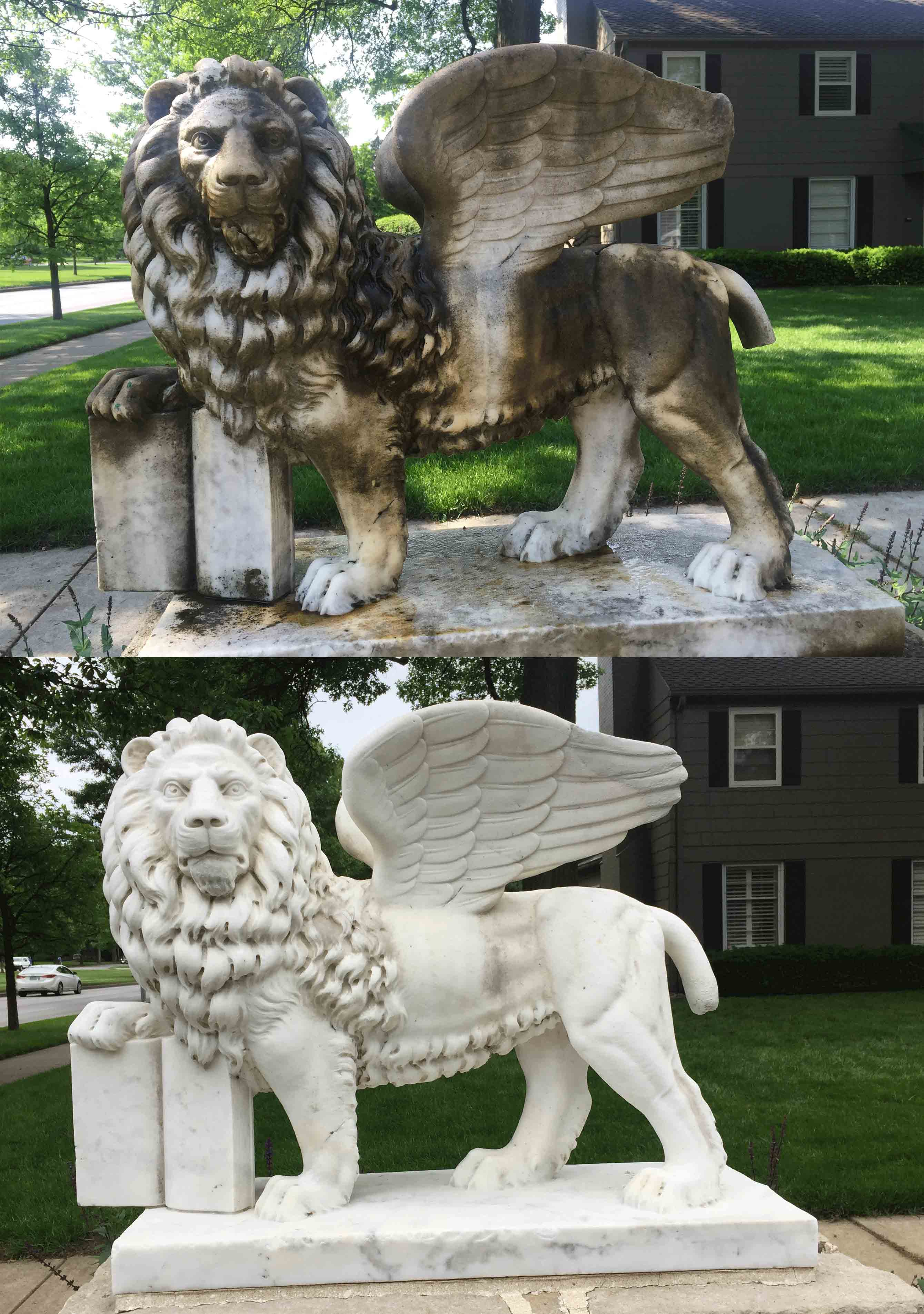 Marble Winged Lion in KCMO